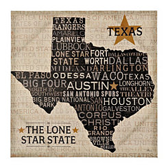 Texas The Lone Star State Canvas Art Print