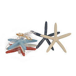 Multicolored Starfish Figurines, Set of 5