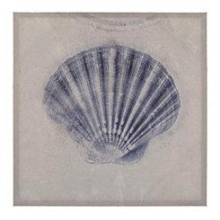 Cobalt Shell Sketch III Canvas Art Print