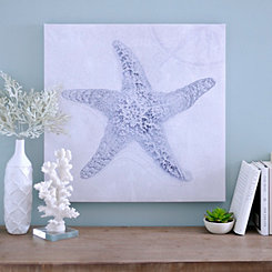 Cobalt Starfish Sketch Canvas Art Print