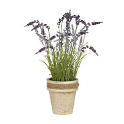 Lavender Mix Arrangement in Tan Pot Planter