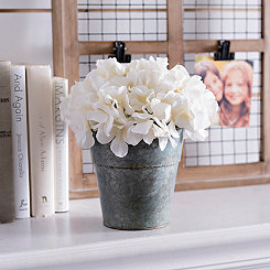 Cream Hydrangea Arrangement in Blue Planter