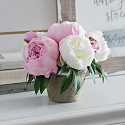 Pink and Cream Peony Arrangement in Tan Planter