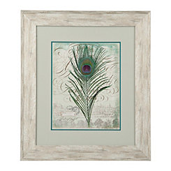 Peacock Feathers I Framed Art Print