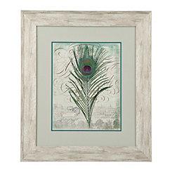 Peacock Feathers I Framed Art Print