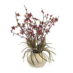 Red Star Flower Arrangement in Cream Planter