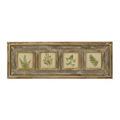 Fern Collection Framed Art Prints