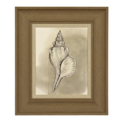 Shell Diagram I Framed Art Print
