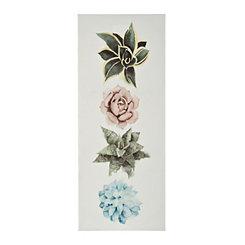 Succulent Plants I Canvas Art Print