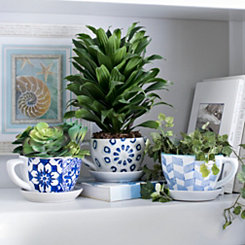 Blue Patterned Teacup Planters
