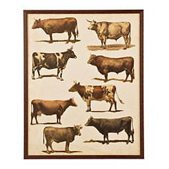 Antique Cow Study Framed Art Print