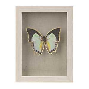 Mosaic Butterfly Shadowbox
