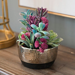 Colorful Succulent Arrangement in Silver Planter