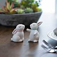 Hugging Bunnies Salt and Pepper Shaker Set