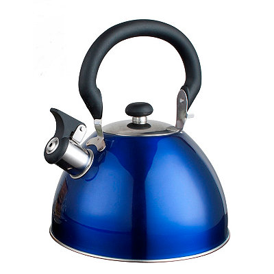 Blue Whistling Tea Kettle
