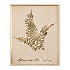 Vintage Fern Botanicals I Framed Art Print