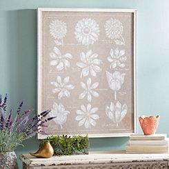 Anemone Plates Framed Art Print