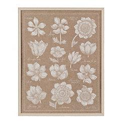 Anemone Plates II Framed Art Print