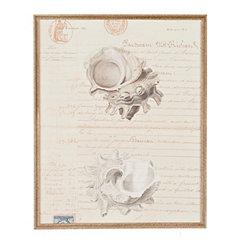 Shell Manuscript II Framed Art Print