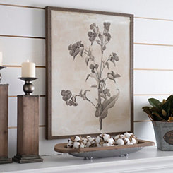Earthy Botanicals III Framed Art Print