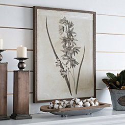 Earthy Botanicals IV Framed Art Print