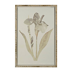 Iris Floater Frame Art Print