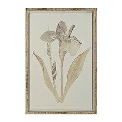 Iris Floater Frame Art Print