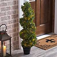 Pre-Lit Spiral Boxwood Topiary