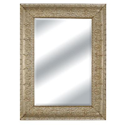 Silver Galvanized Molded Wall Mirror