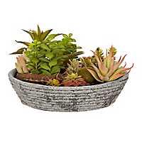 Mixed Succulent Arrangement in Stone Bowl