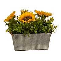 Sunflower Mix Arrangement in Galvanized Planter