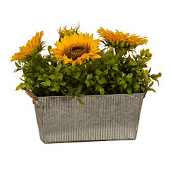 Sunflower Mix Arrangement in Galvanized Planter