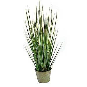 Onion Grass Arrangement in Bucket Planter