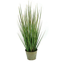 Onion Grass Arrangement in Bucket Planter