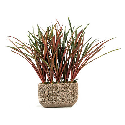 Areca Grass Arrangement in White Ceramic Planter