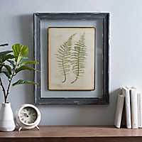 Twin Ferns Framed Art Print