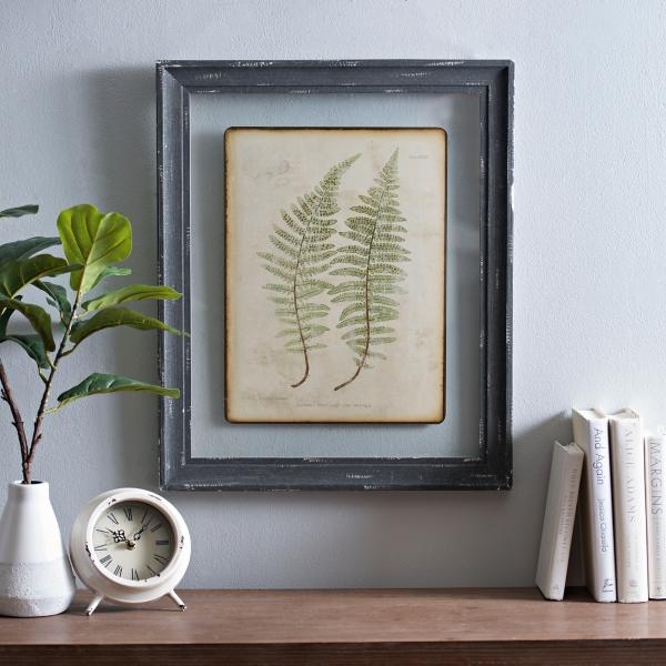 Twin Ferns Framed Art Print