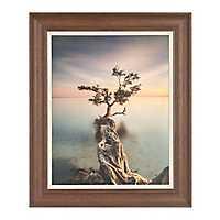 Tree Over Water Framed Art Print