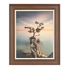 Tree Over Water Framed Art Print