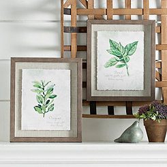 Oregano & Basil Framed Art Prints, Set of 2