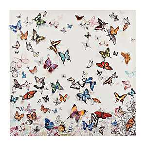 Butterflies Canvas Art Print