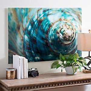Spiral Shell Glass Art Print