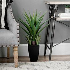 Agave Floor Plant in Black Planter