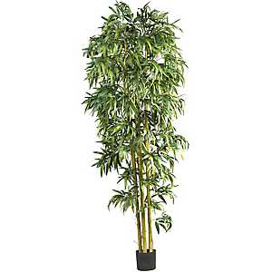 Bamboo Tree, 8 ft.
