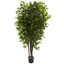 Deluxe Ficus Tree, 6.5 ft.