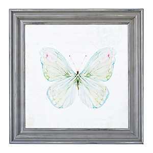 Garden Butterfly Framed Art Print
