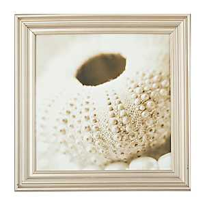 Beaded Pearls & Shells Framed Art Print