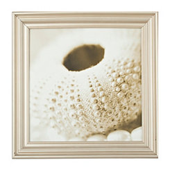 Beaded Pearls & Shells Framed Art Print