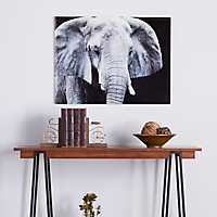 Elephant Floating Glass Art Print