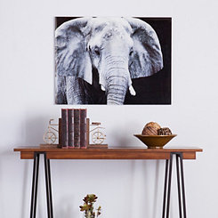Elefant Floating Glass Art Print